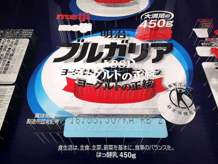 Japón 08